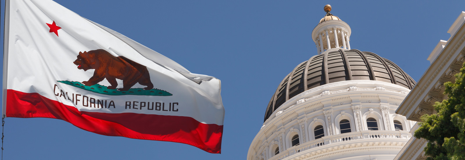 Capital Building and the California flag